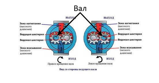 Определить направление вращения насоса НШ-100А